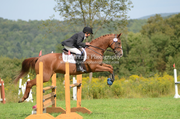 "2011, Competition, Eventing, ""Harry Potter"", ""Horse Trials"", ""Lee Morland"", Pre-Training, ""Robinson HT"", Stadium"