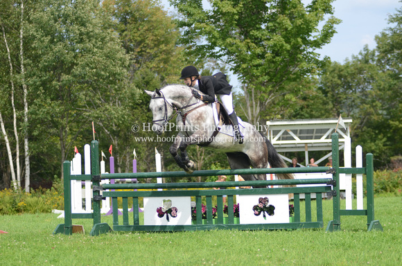"2011, Competition, ""Emmanuelle Gigere"", Eventing, ""Horse Trials"", ""Robinson HT"", ""Sir Rufus"", Stadium"