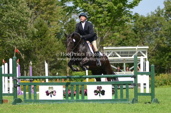 "2011, Competition, ""Dany Morneau"", Eventing, Gustave, ""Horse Trials"", Pre-Training, ""Robinson HT"", Stadium"