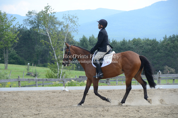 2014, Competition, Eventing, Hey Jude, Horse Trials, Robinson HT, Tom Todaro