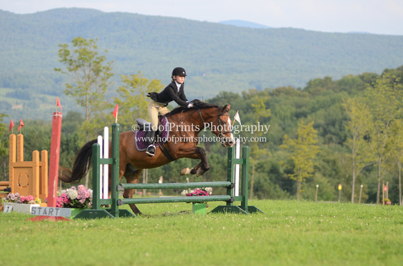 "2011, Competition, ""Emily Wheeler"", Eventing, ""Horse Trials"", Pre-Entry, ""Robinson HT"", Stadium, ""Viking Poco Bar"""
