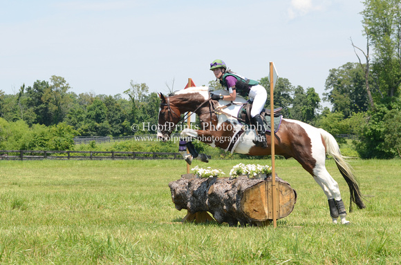 "2012, ""Cross Country"", ""Darcy Swain"", Eventing, ""Horse Trials"", Novice, Surefire"