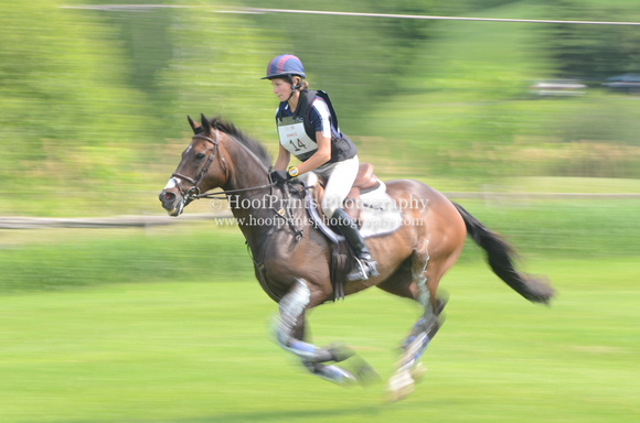"2014, Bromont, CCI**, Competition, ""Cross Country"", ""Ellie van Gemeren"", Eventing, Gallop, ""Gemini Pilot"", ""Horse Trials"", Panning"