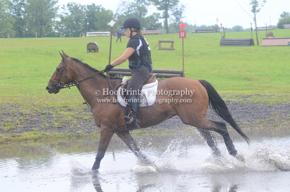 2014, Competition, Cross Country, Eventing, Horse Trials, Roberto, Robinson HT, Wendy Jones