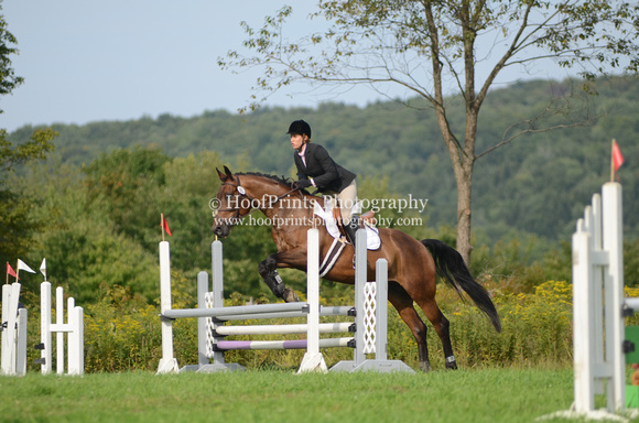 "2011, Boromir, ""Caroline Dupont"", Competition, Entry, Eventing, ""Horse Trials"", ""Robinson HT"", Stadium"