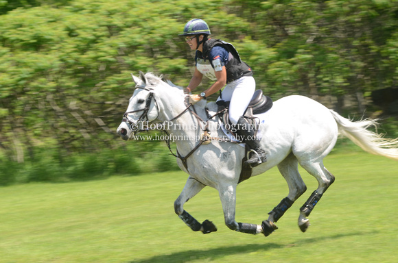 "2014, Bromont, CCI***, Competition, ""Cross Country"", Eventing, ""FIS Prince Charming"", ""Horse Trials"", ""Lisa Barry"""