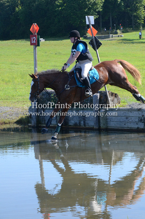 "2014, ""Allison Henson"", Competition, ""Cross Country"", Eventing, ""Gurraun Jeseabelle"", ""Horse Trials"", ""Robinson HT"", ""Water Jump"""