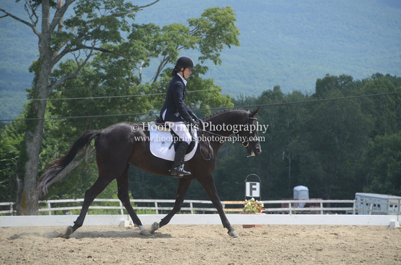 2014, Addie, Competition, Constance Millaire-Piche, Dressage, Eventing, Horse Trials, Robinson HT